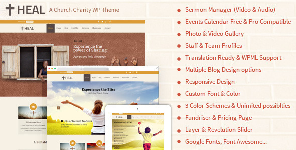 Heal ngo wordpress theme review