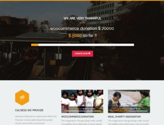 Best WordPress Themes for Your Charity, Crowdfunding and Non-profit Projects