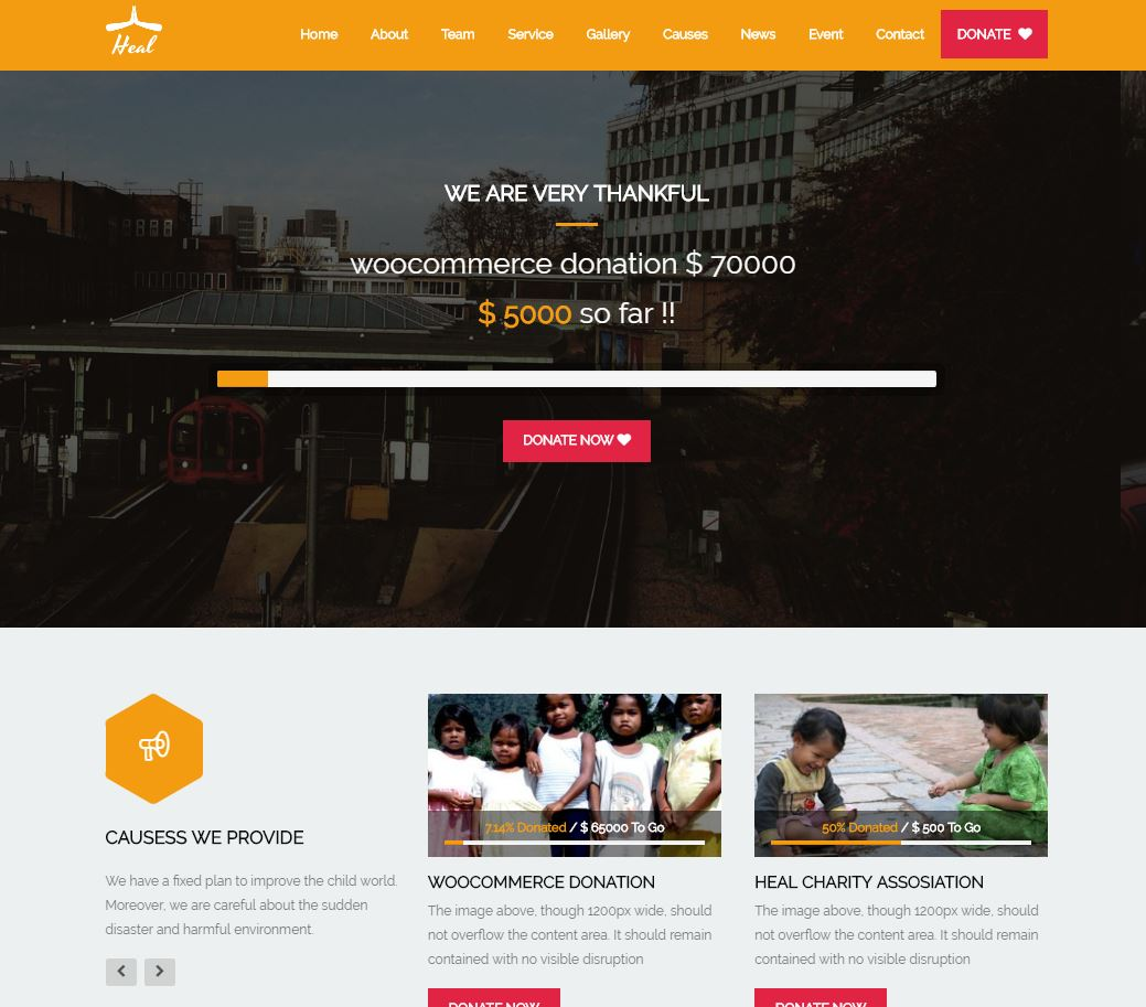 Wordpress: Best Wordpress Themes For Your Charity, Crowdfunding And