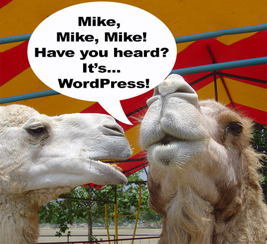 camel_wpart