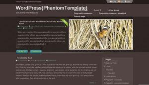 PhantomTemplate-Free-Wordpress-Theme