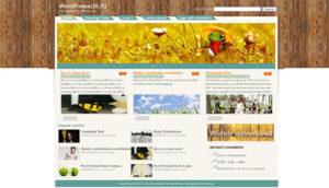 sls-Free-Wordpress-Theme