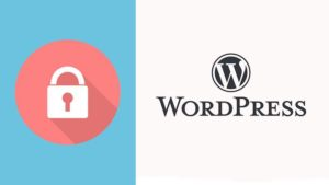 Worpdress security protect against malware brute force plugins